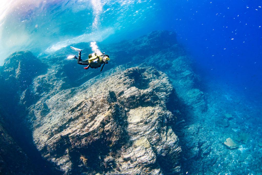 断崖絶壁にキビナゴがものすごい数いる
