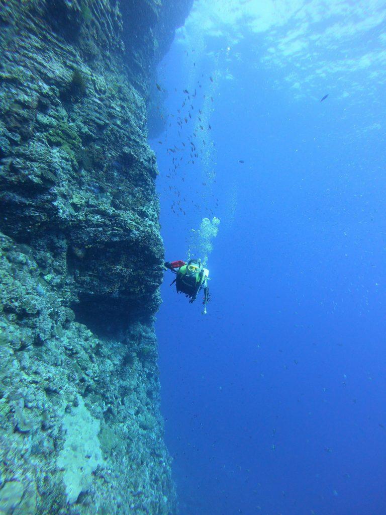 断崖絶壁を飛ぶように泳げるのもダイビングの醍醐味
