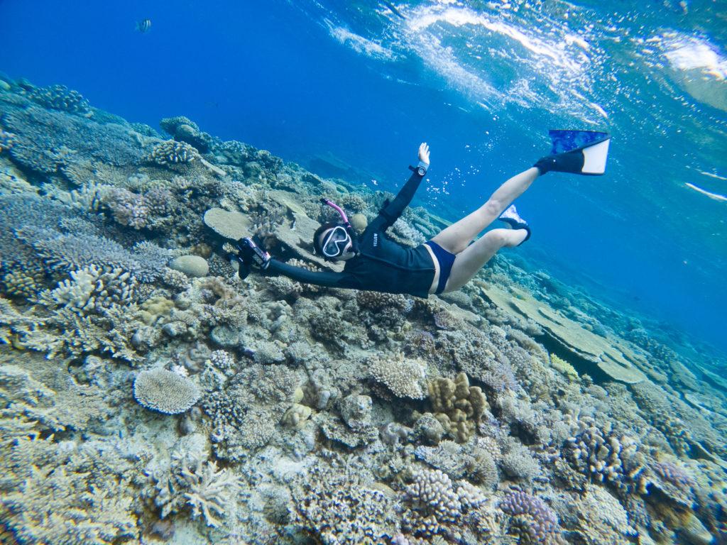 水納島のサンゴはホント最高